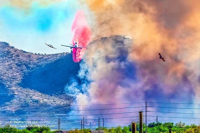 Aquila Fire.webp