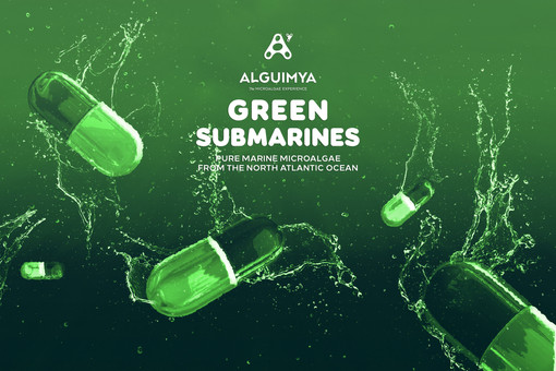 WE WILL ALL DIVE IN A GREEN SUBMARINE
