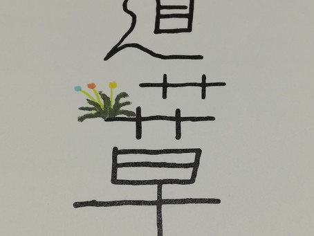 映画「道草」のパンフレットにある佐藤幹夫さんのレビューのタイトル「鳥は空に、魚は海に、人は社会に」