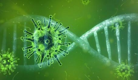 CORONAVIRUS: Pourqoi est-ce que la France a échouée face au virus?