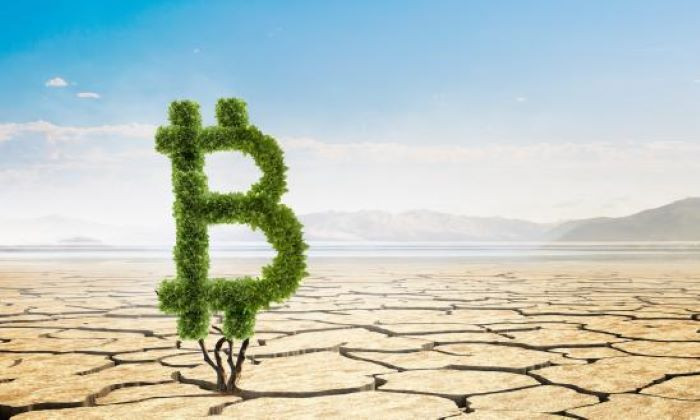 Bitcoin and the environmental cover up