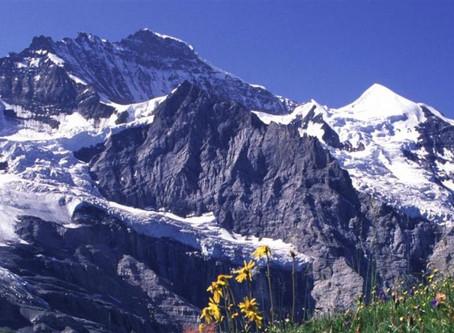 Coronavirus: How will Hedge Fund Managers in Switzerland respond?