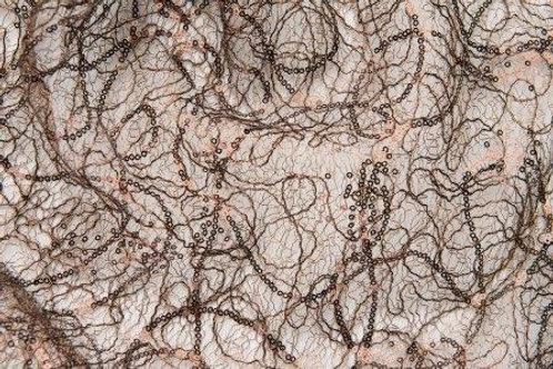 Sugar Sequins Webbed Brown Linen