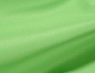 Solid Poly Lime Green Linen