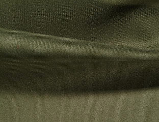 Solid Poly Olive Linen