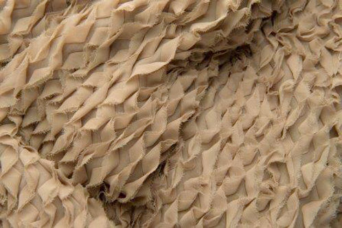 Chiffon Taupe Ruffles