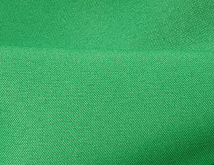 Solid Poly Kelly Green Linen