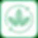 Iconos Pagina Web Vitabag_Mesa de trabaj