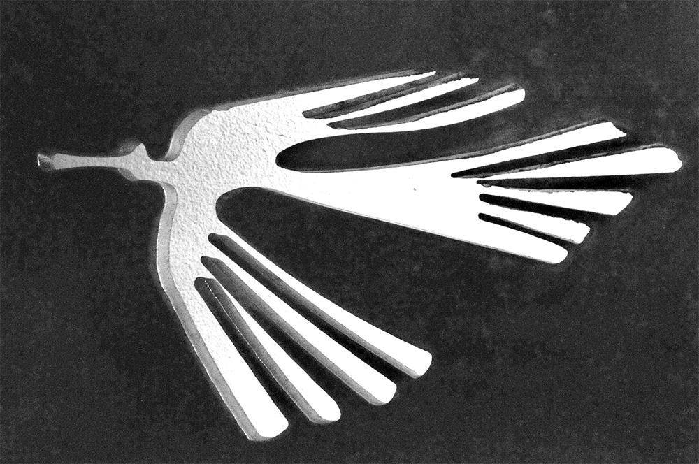 oiseauBIOSFER CREATION