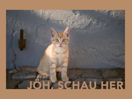 JÖH, SCHAU HER