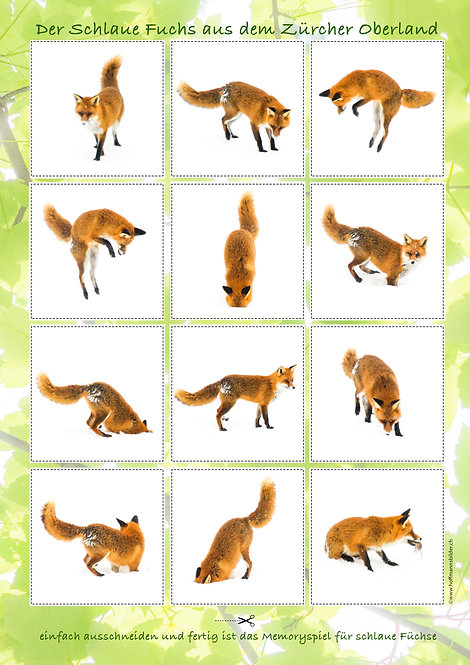 Print edition. The swiss smart fox memory 2x12 cards