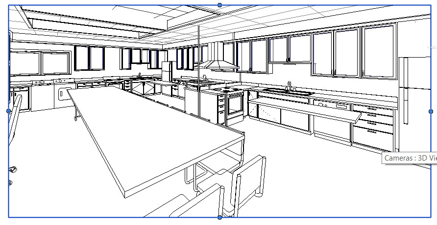 Braille-kitchen1.jpg