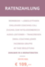 Zahlungspläne wix (2).png