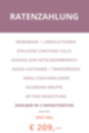 Zahlungspläne wix (1).png