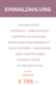 Zahlungspläne wix (6).png
