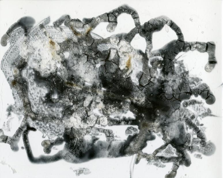 Imprint 22