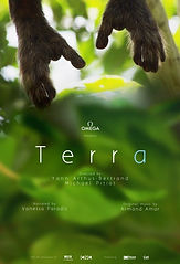 Image of the movie poster for Terra. It shows bonobo hands reaching down from a tree
