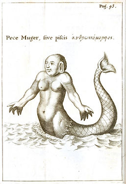 Mythology - Mermaid (Fish woman)-700x102