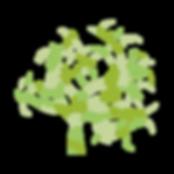 Arbre-vert_modifié.png