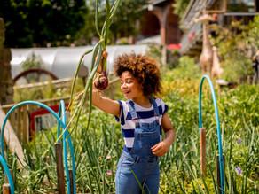 Farm to Fork: Food Education at Ouseburn Farm