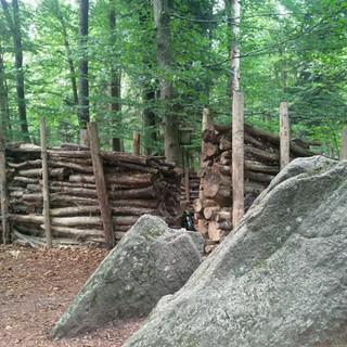Eingang zum Waldsofa
