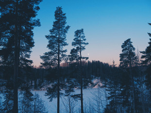 Winter Camping Challenge @Nuuksio National Park