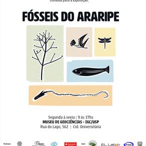 Mostra da USP 'Fósseis do Araripe'  #fosseis_do_araripe