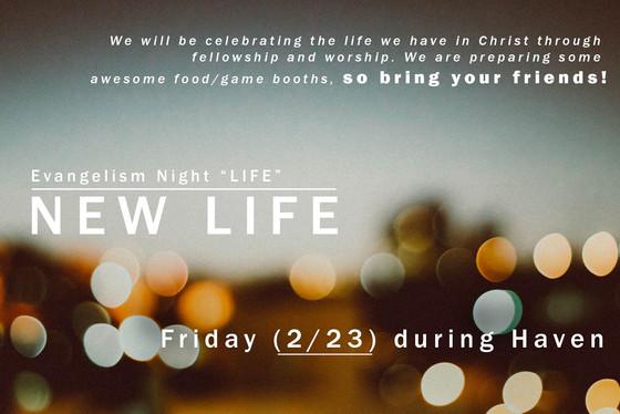 NEW LIFE Festival