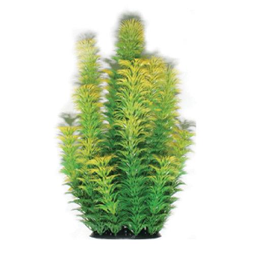 Plastic Plant Series (2)