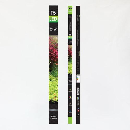 AZ T5 LED PLANTED