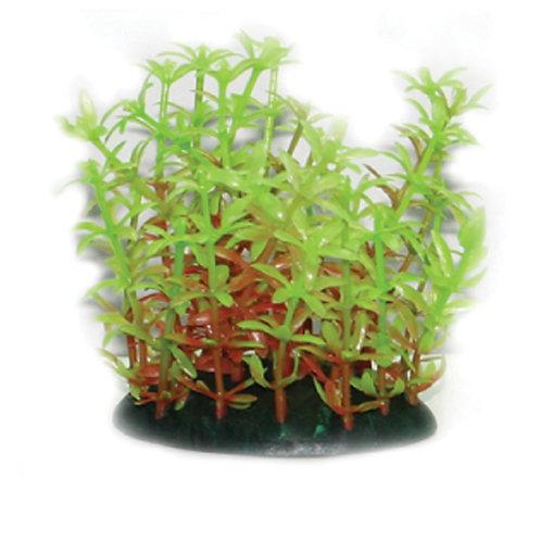 Plastic Plant Series