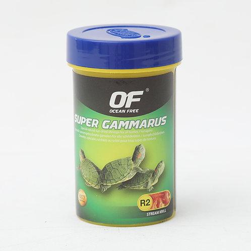 OF Super Gammarus