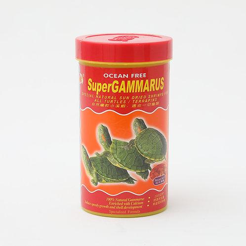OF R2 - SUPER GAMMARUS