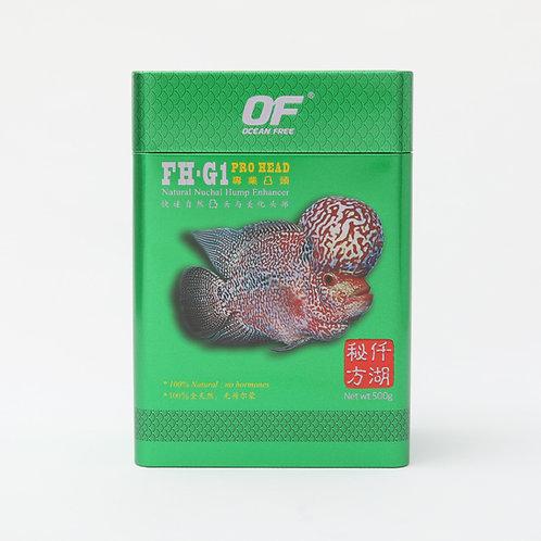 OF FH-G1 PRO HEAD 500g