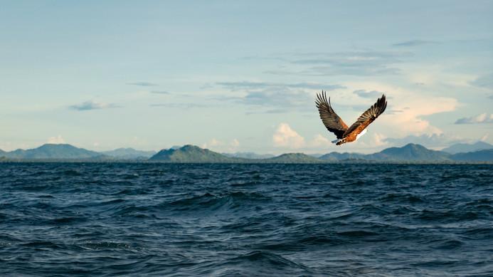 Eagle Lake Malawi (1 of 1).jpg
