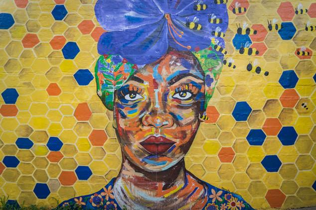 Street Art Livingstone (2 of 2).jpg