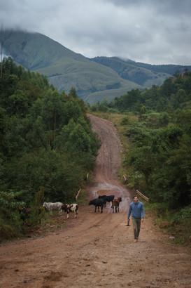 Travis Walk Bulembu Swazi (2 of 2).jpg
