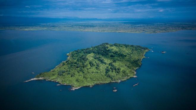 The Blue Zebra - Island View-0068.jpg