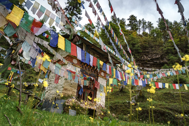 Bhutan  (2 of 3).jpg