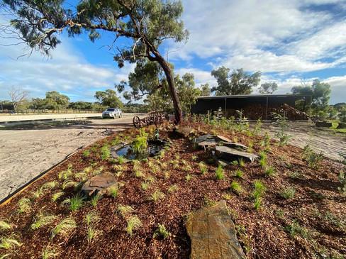 acreage landscaping.jpg
