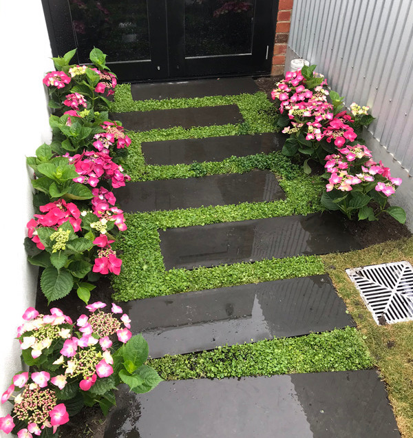 garden design and paving.jpg
