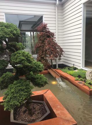 internal courtyard.jpg