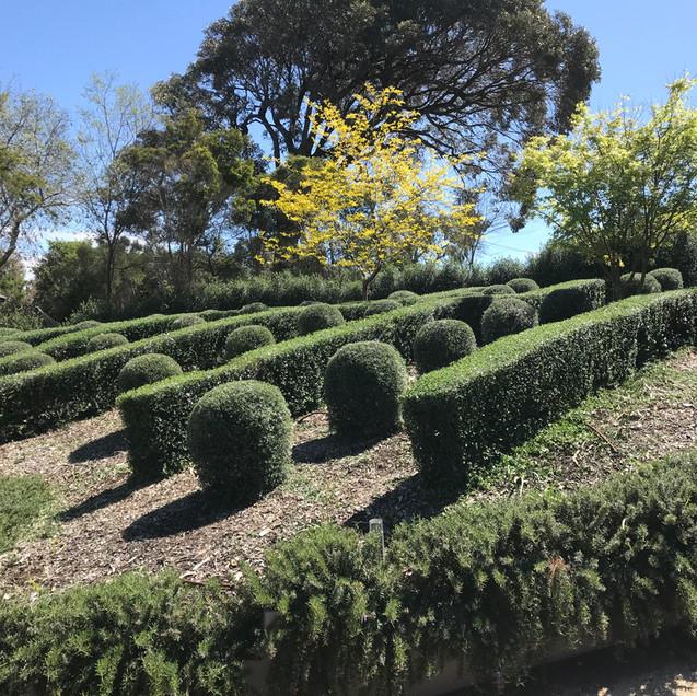 mornington peninsula garden design.jpg