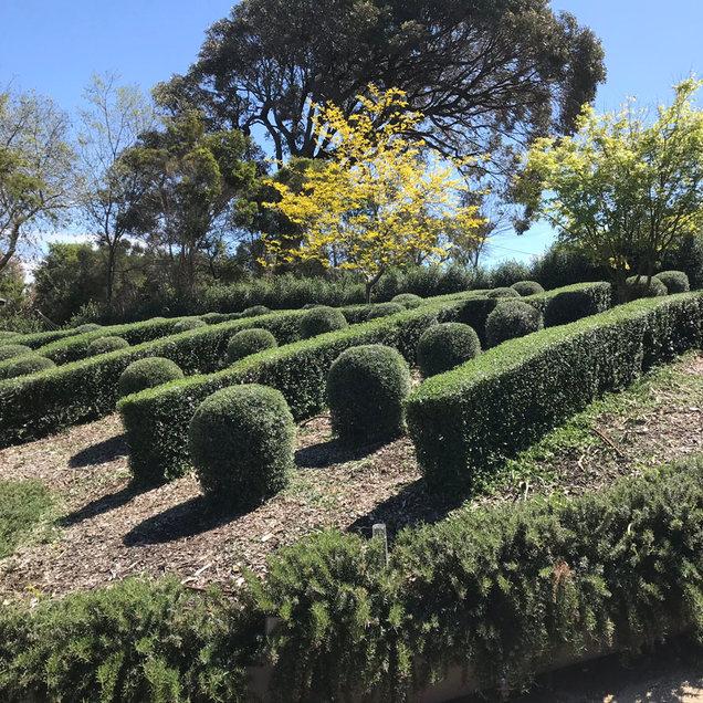 garden desing.jpg