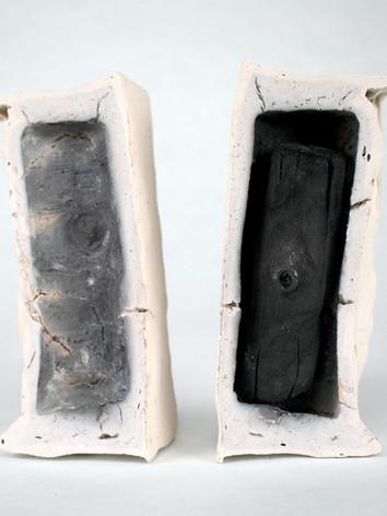 Fossilized III (Catalpa), 2019.