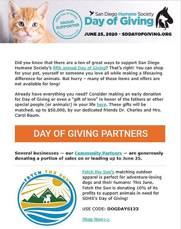 SDHS Day of Giving Flyer