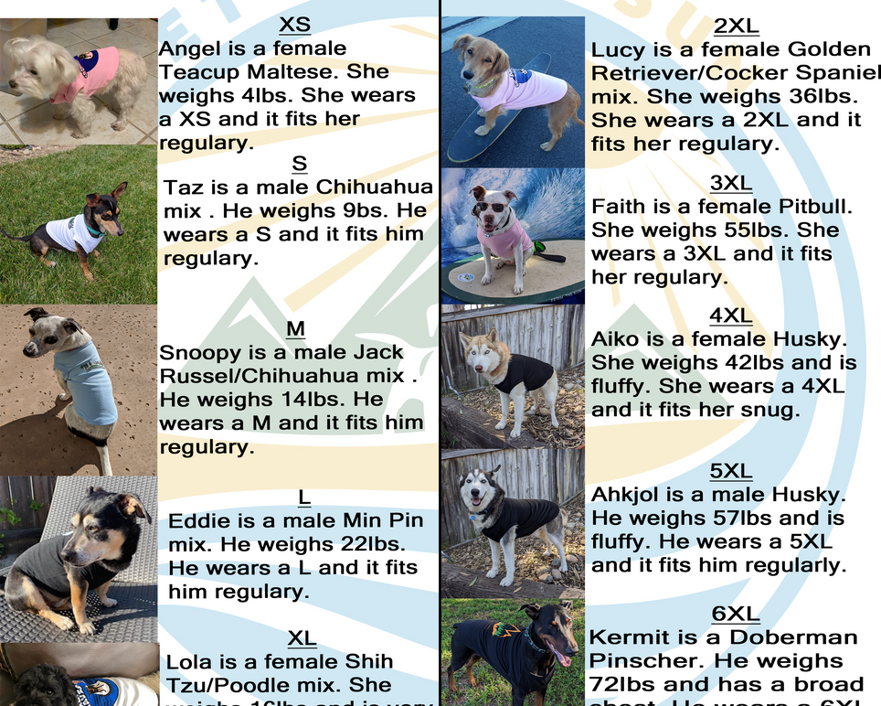 Dog's Sizing Chart with Examples