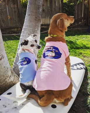 A Couple Dog Grommets.jpg