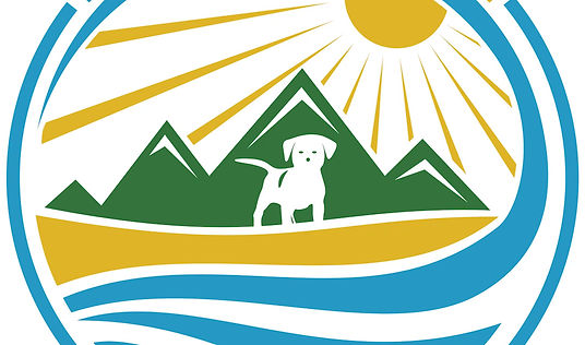 Fetch the Sun makes shirts for all your adventures!