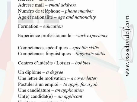 Le CV en français